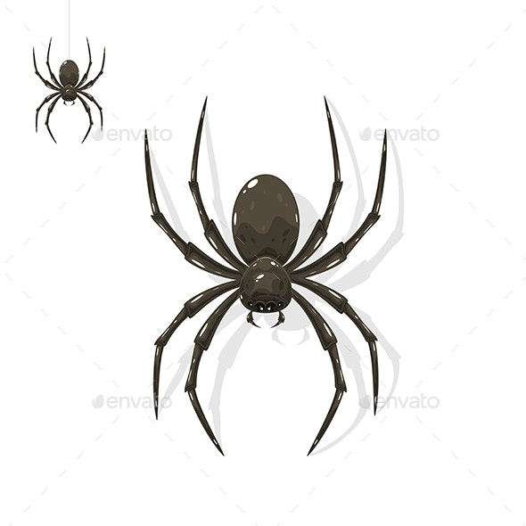 Black Spider - Animals Characters