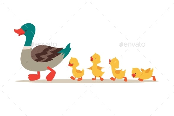 Mother Duck and Ducklings - Animals Characters