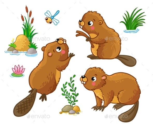 Vector Set with Isolated Beavers - Animals Characters