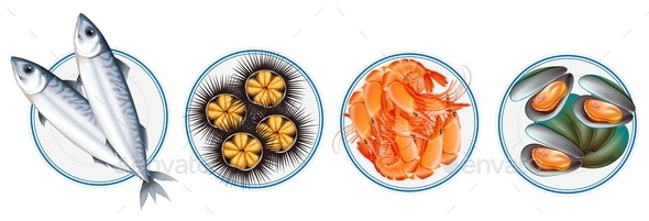 Different Types of Seafood - Food Objects