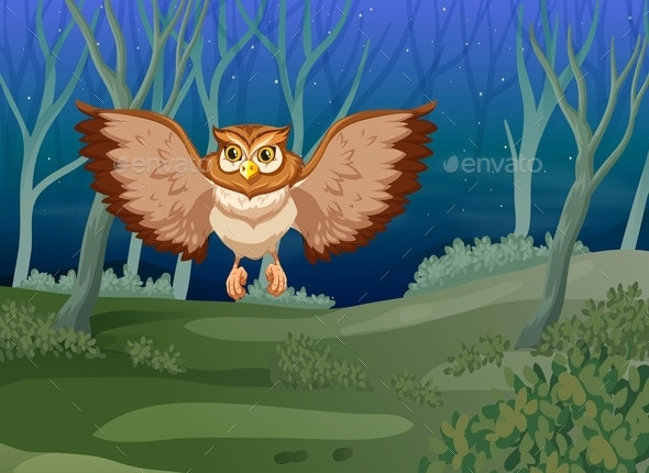 Owl Flying at Night - Animals Characters