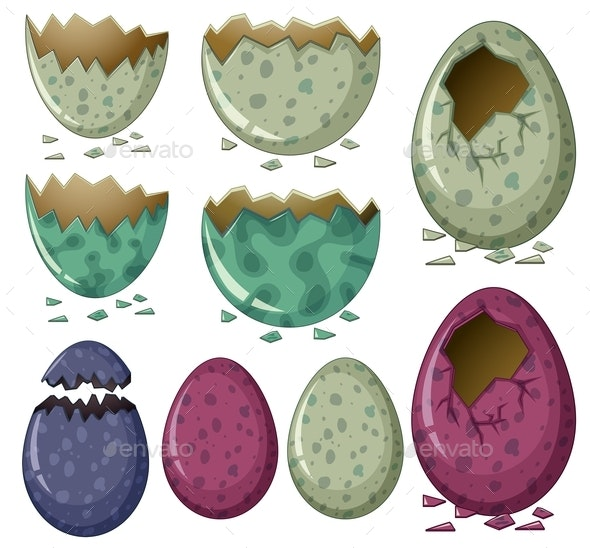 Different Patterns of Dinosaur Eggs - Organic Objects Objects