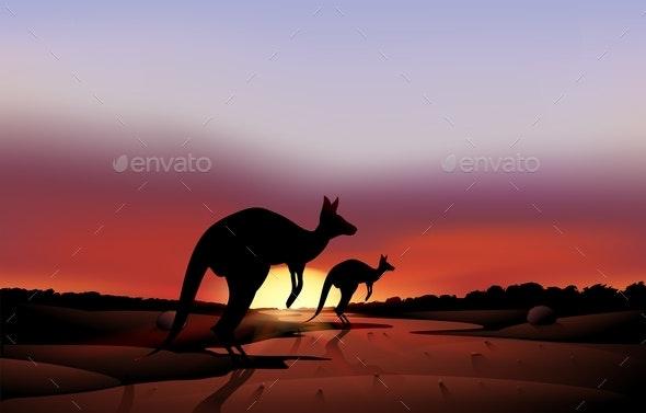 Kangaroos in The Desert - Animals Characters