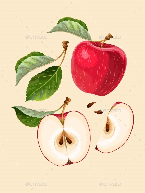 Vector Set of Apple Fruits and Leaves - Food Objects