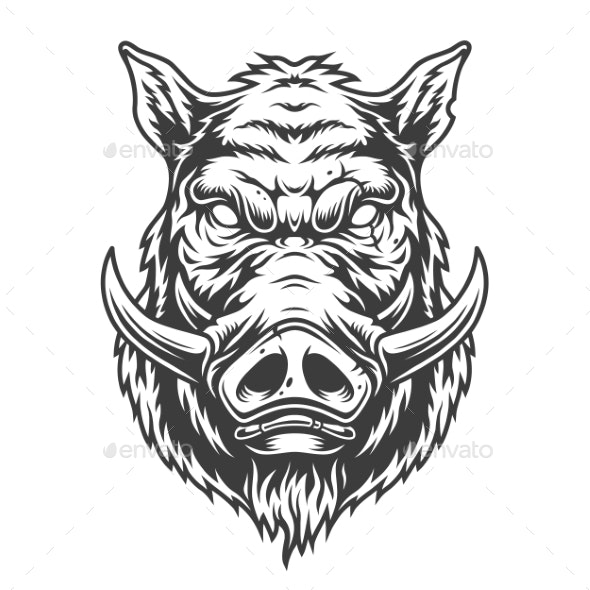 Boar Head in Black and White Color Style - Animals Characters