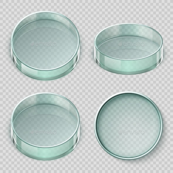 Empty Glass Petri Dish - Man-made Objects Objects