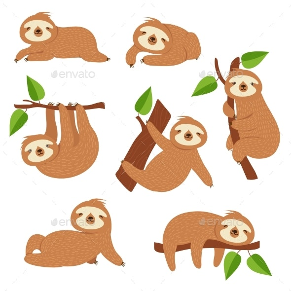 Sloths - Animals Characters