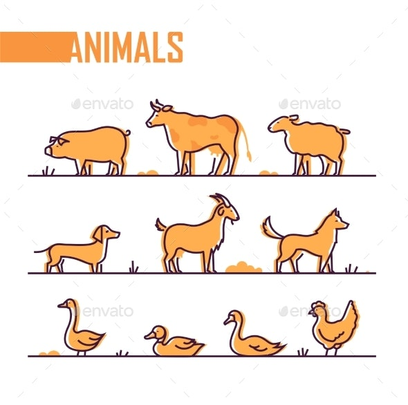 Set of Farm Animals - Line Design Style Colorful - Animals Characters