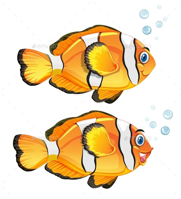 A Set Of Clownfish On White Background - Animals Characters