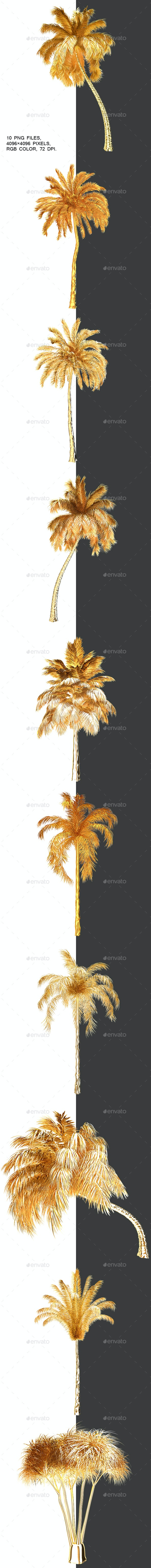 Packing Golden Palm Trees With Alpha Channel - Objects 3D Renders