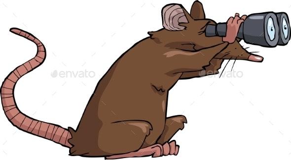 Rat Looking - Animals Characters