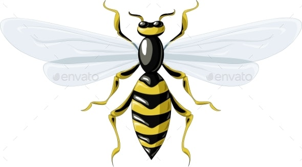 Wasp - Animals Characters