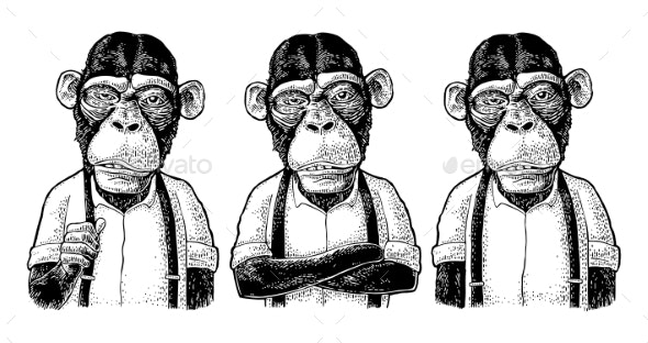 Monkey Businessman in the Shirt and Suspender - Animals Characters
