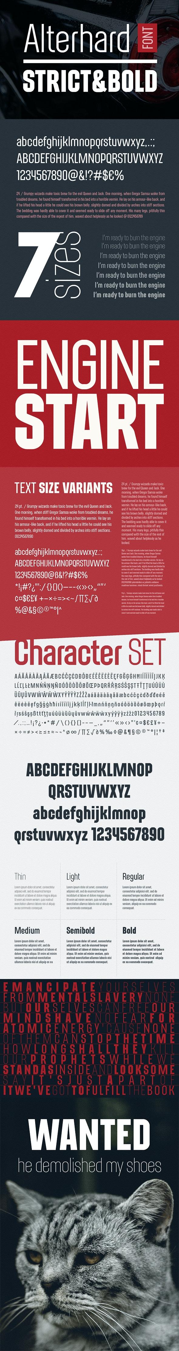 Alterhard Condensed Strict Font - Condensed Sans-Serif