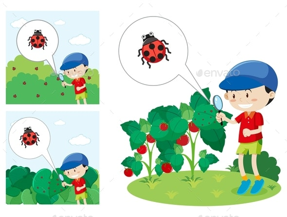 Boy With Magnified Glass Looking at a Lady Bug - People Characters