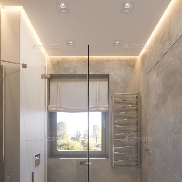 3d Render Interior Design of the Bathroom