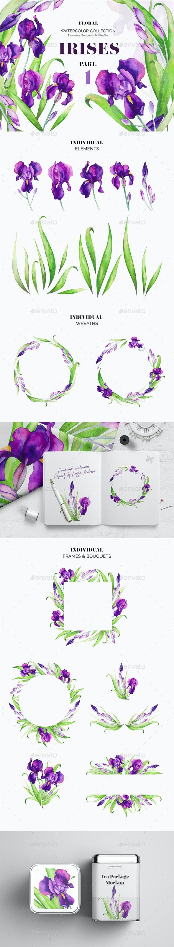 Violet Irises Watercolor Floral Set - Borders Decorative