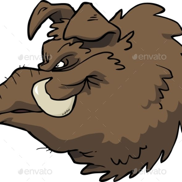 Cartoon Boar's Head