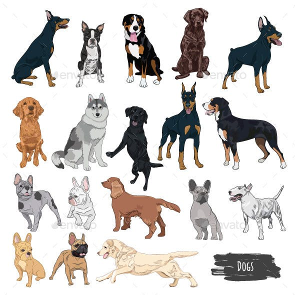 Purebred Dogs Vector Set for your Design