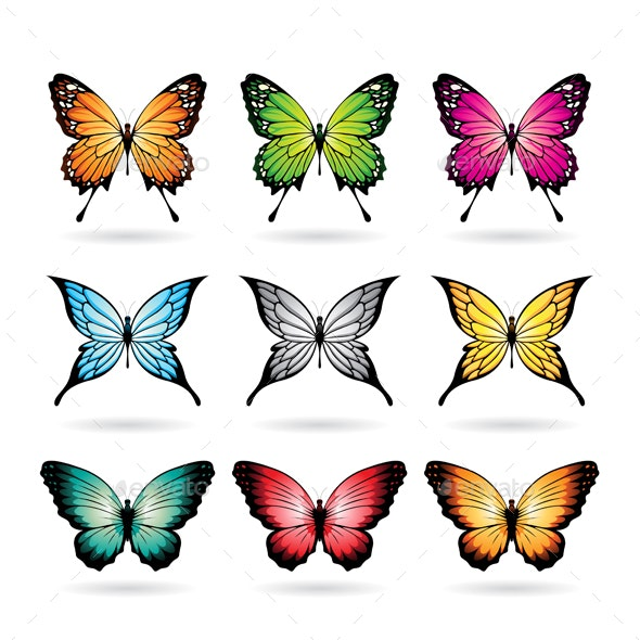 Various Colorful Butterflies - Animals Characters