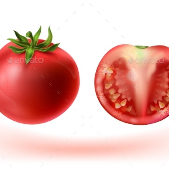 Vector Realistic Set of Red Tomatoes