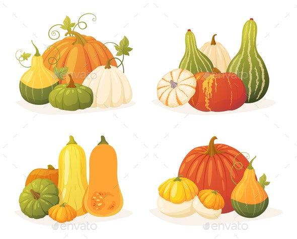 Colorful Pumpkin Set - Food Objects