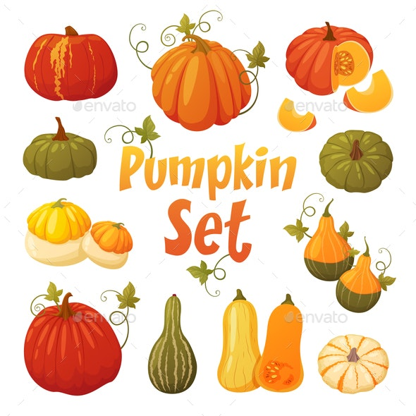 Colorful Pumpkin Set - Food Objects