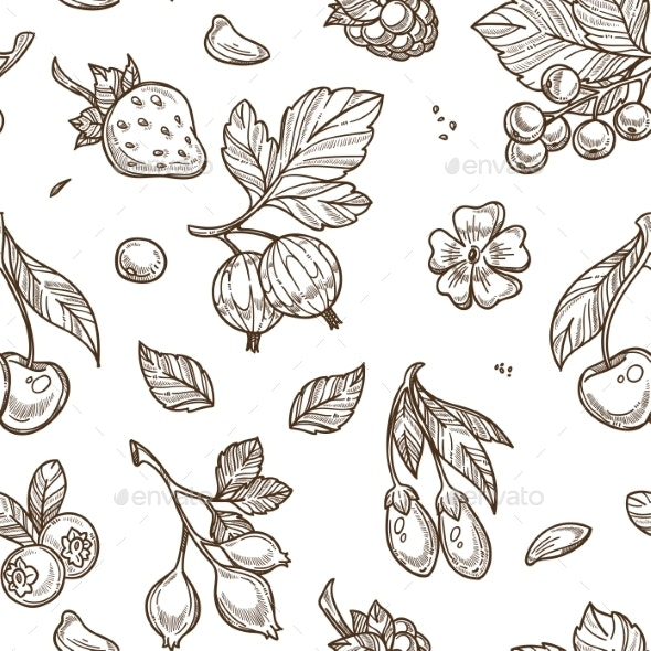 Fruits Raspberries and Berries Sketches Seamless - Food Objects