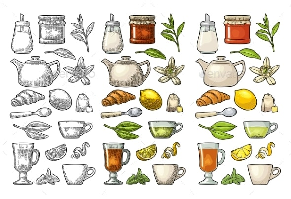 Cup of Tea and Branch with Leaves - Food Objects