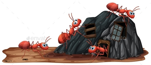 Worker Ants on White Background - Animals Characters