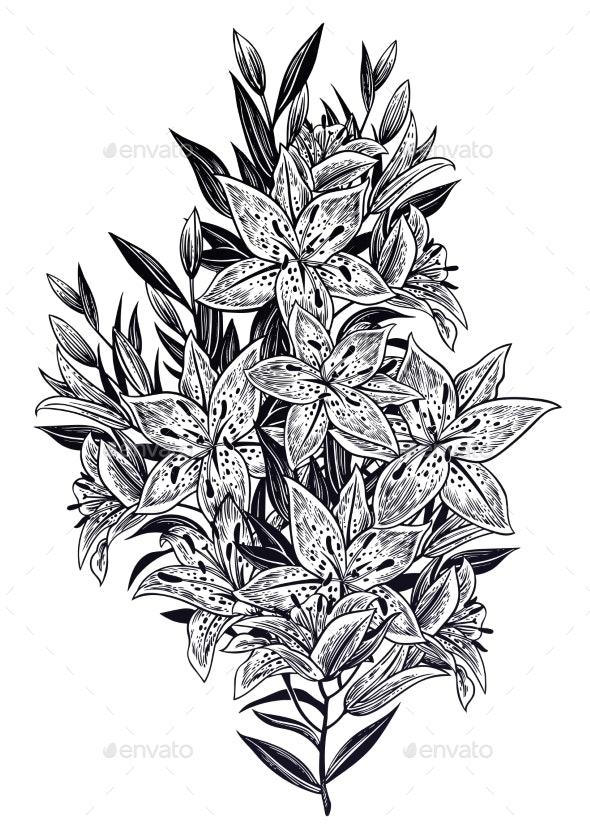 Wild Summer Lilium Flowers - Flowers & Plants Nature