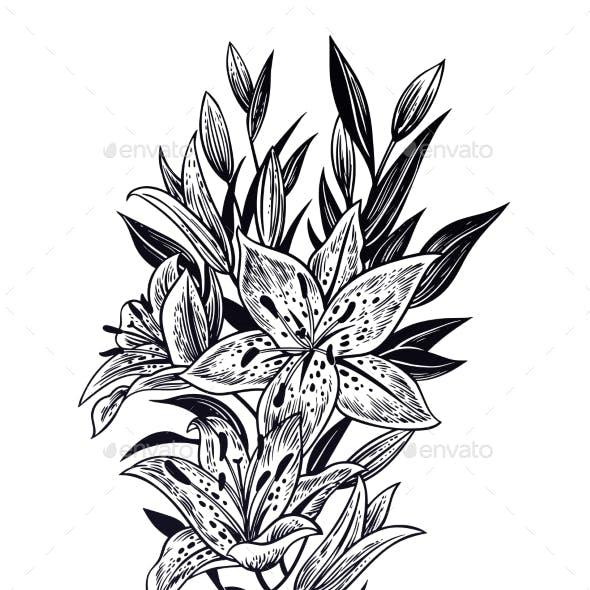 Wild Summer Lilium Flowers