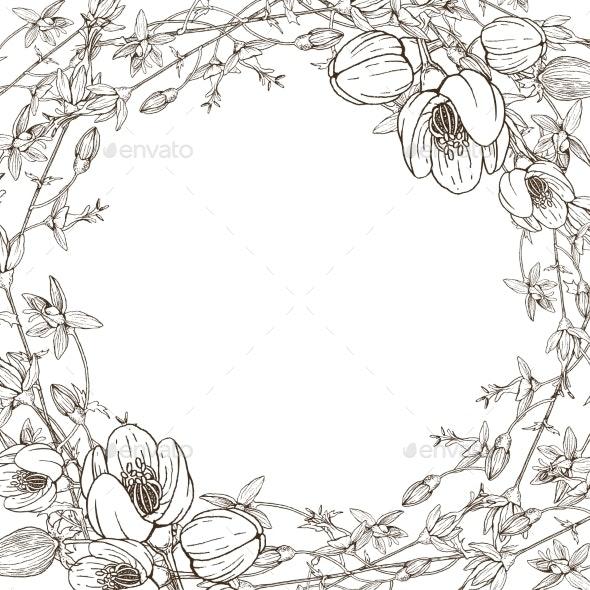Wreath of Wild Herbal Flowers - Flowers & Plants Nature