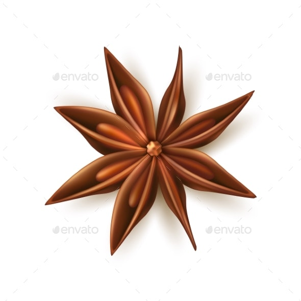 Realistic Dried Anise Star Vector with Pits - Food Objects