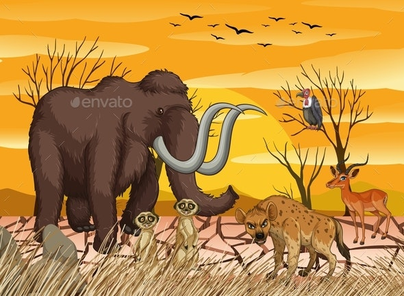Wild Animals At Dry Forest - Animals Characters