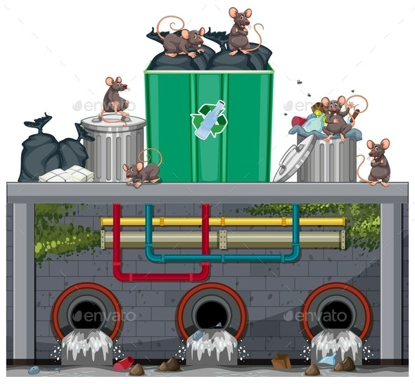 Unsanitary Waste Disposal with Rat - Miscellaneous Conceptual