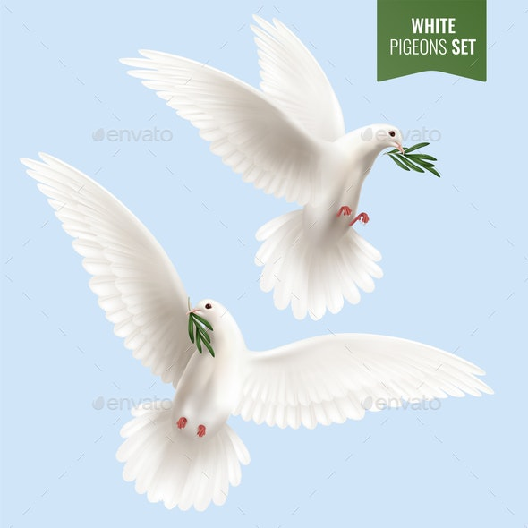 White Dove Realistic Set - Animals Characters