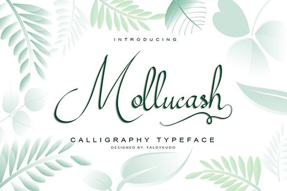 Mollucash - Calligraphy Script