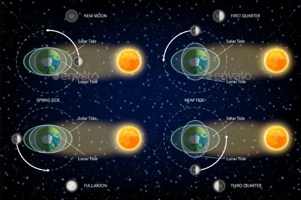 Lunar and Solar Tides Diagram Vector Illustration - Miscellaneous Vectors