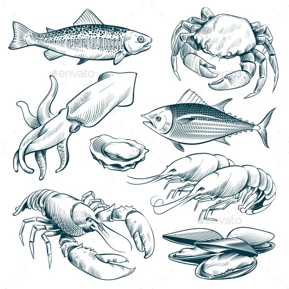 Seafood - Animals Characters