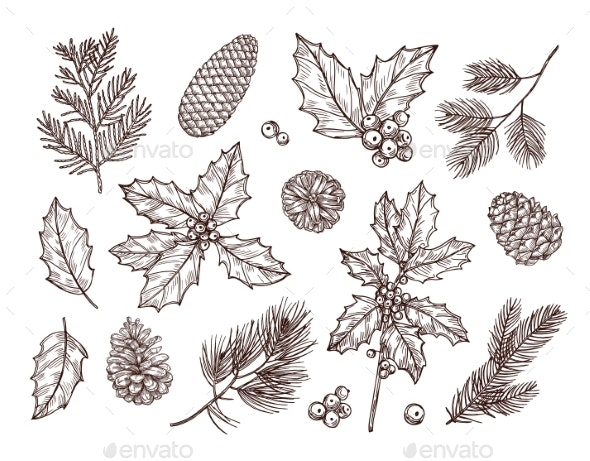 Christmas Plants - Organic Objects Objects