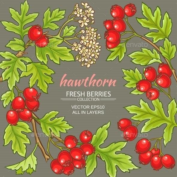 Hawthorn Vector Frame - Food Objects