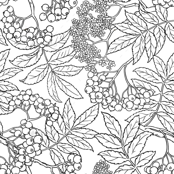 Rowan Seamless Pattern - Health/Medicine Conceptual