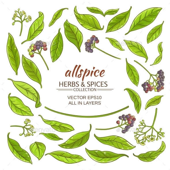 Allspice Elements Set - Food Objects