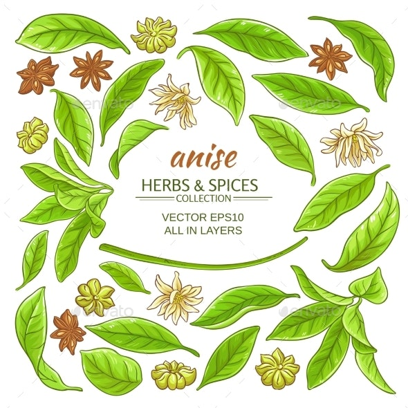 Anise Elements Set - Food Objects