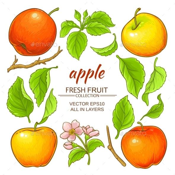 Apple Elements Set - Food Objects