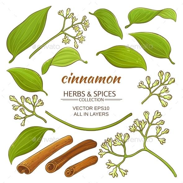 Cinnamon Elements Set - Food Objects