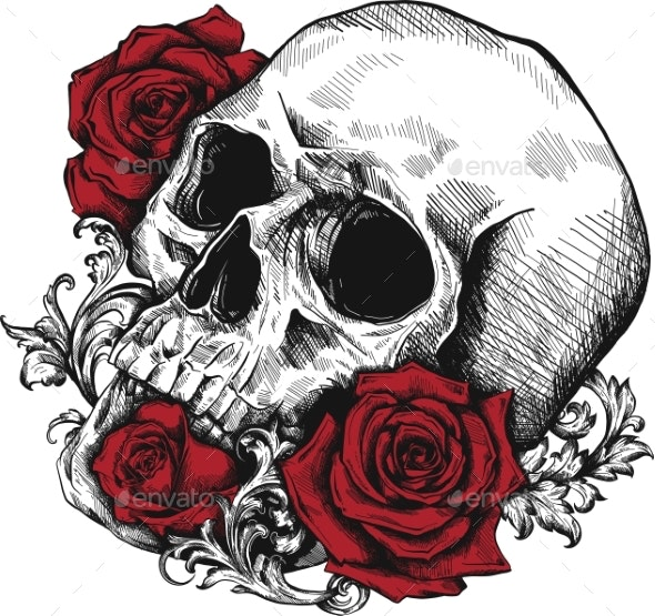 Human Skull with Roses on White Background - Flowers & Plants Nature