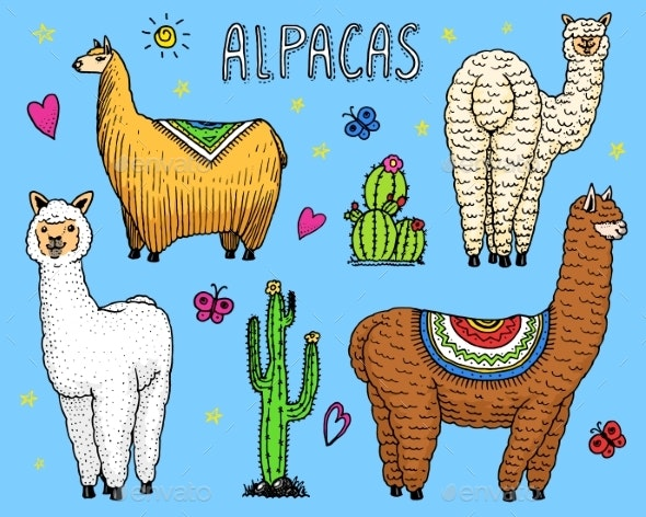 Set of Alpaca Llamas - Animals Characters