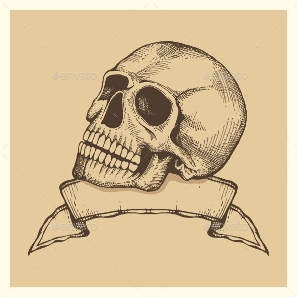 Human Skull Sketch with Ribbon Banner - Miscellaneous Vectors